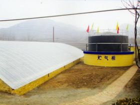 10 Tons Animal Manure Biogas Project